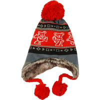 Grateful Dead Men's Dancing Bears Beanie Red