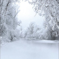 Snowy Trees Thin Vinyl Photography Studio Backdrop Photo Background 5x7FT 4676