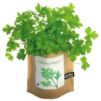 Garden in a Bag: Parsley : Branch: Sustainable Design for Living