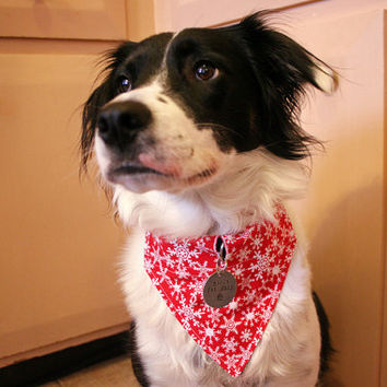 Handmade Dog Bandana with Space for Tags - Red Snowflakes Holiday Dog Bandana Velcro Over the Collar w ID Tag Slot Dog Accessories Dog Scarf
