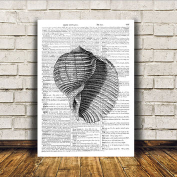 Beach house decor Nautical art Seashell poster Marine print RTA376