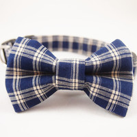 Dog Collar Bow Tie Set Rufus