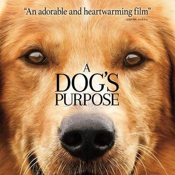 A Dog's Purpose [Includes Digital Copy] [UltraViolet] [Blu-ray/DVD] [2 Discs] [2017]
