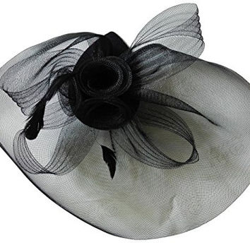 Coolr Black Fascinator Hats Mesh Net Feather Cocktail Party Hair Clip
