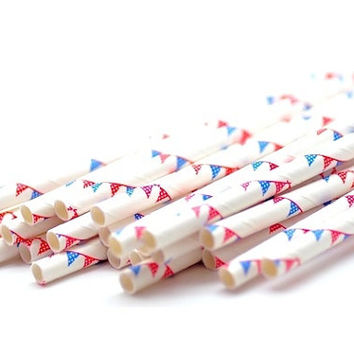 B20 Paper Straw. Bunting. Garland. Red. Blue. White.