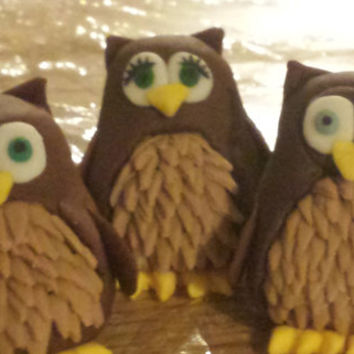 edible owl cake toppers made of gumpaste, weddings, baby showers, birthday cakes, party favors