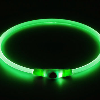 Pack of 1 PCS- LED Dog Collar, USB Rechargeable
