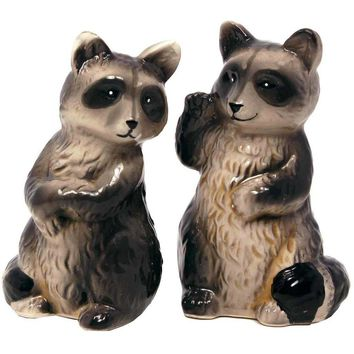 Salt & Pepper Shaker Set - Raccoon