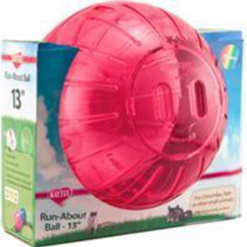 Super Pet- Container - Run-about Ball-rainbow