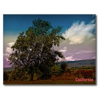 Colorful California landscape post card