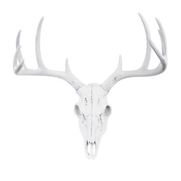 The MINI White Faux Taxidermy Resin Deer Head Skull Wall Mount | White Deer Head Skull w/ Colored Antlers