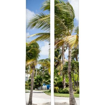 Caribbean Palms Knee High Socks
