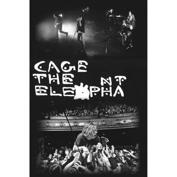 Cage The Elephant Domestic Poster