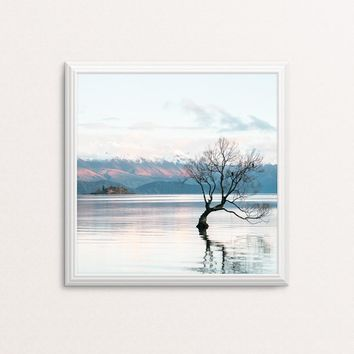 Lone tree at Lake Wanaka  - photo art print