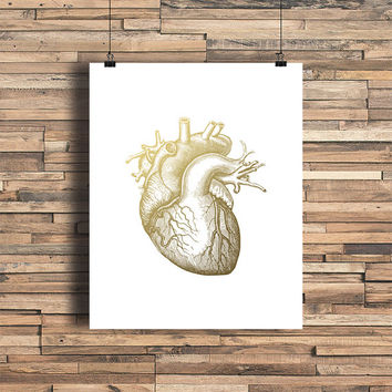 Anatomical Heart Faux Gold Foil Art Print - Vintage Engraving - Bedroom Decor - Bathroom- Shower Gift - Wedding Gift - Baby Nursery- Love