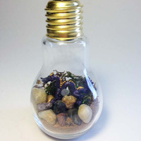 Recycled Chinese Dragon Light bulb Terrarium