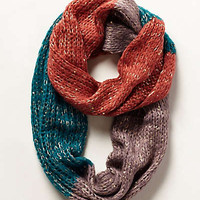 Northern Flicker Infinity Scarf
