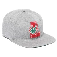 LRG - LRG Lifted Degenerates Strap Back - Ash Heather - Hats - Accessories
