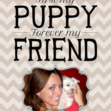 First my Puppy Forever my Friend - Custom 8x10 Art Print Unframed, Dog Quote, Pet Memorial Gift - Dog Photo, Cat, Animal, Dog Lover, Animal