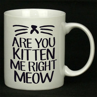 Are You Kitten Me Right Meow For Ceramic Mugs Coffee *