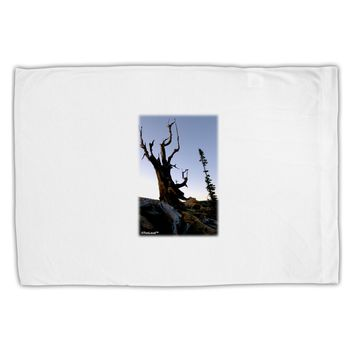 Colorado Mountain Scenery Standard Size Polyester Pillow Case by TooLoud