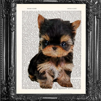 Teacup Yorkie Art Tiny Puppy Print-Cute Gift Poster-Upcycled Dictionary Print-Book Print Page Art-Antique Book Page-Kid's Room Nursery Decor