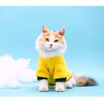 Fleece Hoodie Kitty Outfit