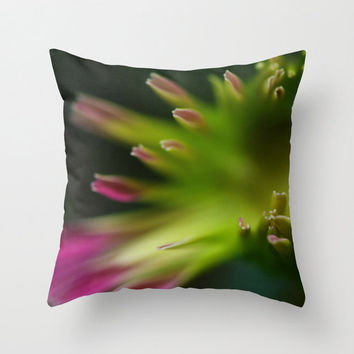 Throw Pillow Cover Gerbera Daisy Macro Photography Print Green Pink Polyester