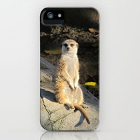 Meerkat iPhone Case by RichCaspian | Society6