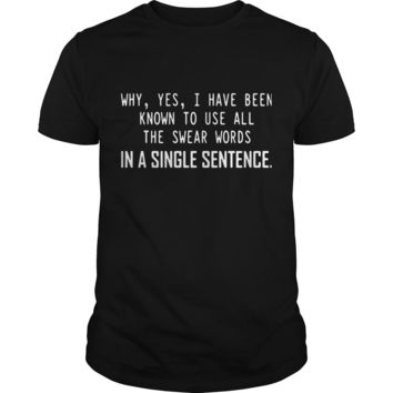 Why yes I have been know to use all the swear words in a single sentence shirt Guys Tee