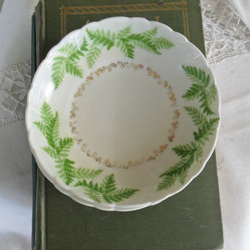 Vintage Summer China Bowls Fern Pattern Vintage German 1920s