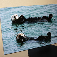 Sea Otter Photo Canvas Nature and Wildlife Large Canvas Wall Art Photo Canvas 24x36
