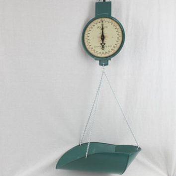 Vintage American Family 60 Pound Hanging Scale,  Produce Scale