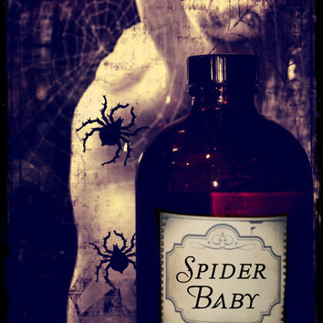 SPIDER BABY-Hand Blended Artisan Oil-1ML Sample Vial-(primary notes: blood orange, star anise, fennel, cinnamon, sugar cane)