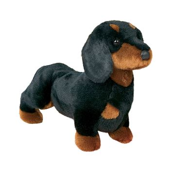 Spats the Black and Tan Dachshund