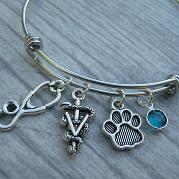 Veterinary Aesculapius Bracelet, Expandable Bangle Bracelet, Adjustable Stainless Steel Bracelet, Veterinary Bracelet, Vet Tech Bracelet