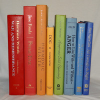 Amazing Rainbow Colored Books for Book Decor