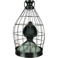Crow In Cage Animated Halloween Decoration - Walmart.com