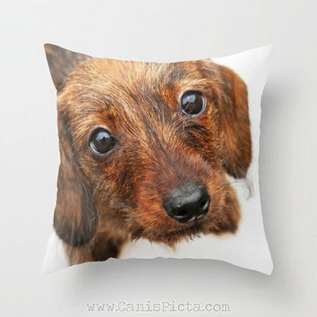 Red Wire Hair Dachshund Throw Photo Pillow Dog Photography 16x16 Decorative Cover Doxie Wiener Sausage Whimsical Puppy Dreamy Home Decor Pup