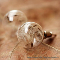 Nature Inspired Jewelry Real Dandelion Earrings (HM0048)