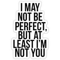 """I May Not Be Perfect, But At Least I'm Not You"""