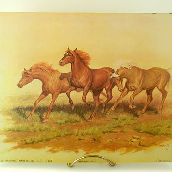 Vintage 8 x 10 Lithograph, Three-Horse Frolic, Mike Carroll, 1981 Arthur A Kaplan Co. Inc, New York,  Litho in USA, LF-8298
