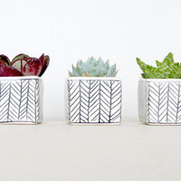 Mini Square Planter Set of Three with Herringbone Pattern - Made to Order
