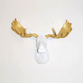 Faux Taxidermy - The Glitz - Resin Moose Head W/ Gold Antlers - Faux Taxidermy