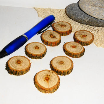 Small Wood slices set 8 pieces. Osage Orange wooden discs, natural eco friendly. Wooden slabs Maclura Pomifera. Round wood tags circle wood