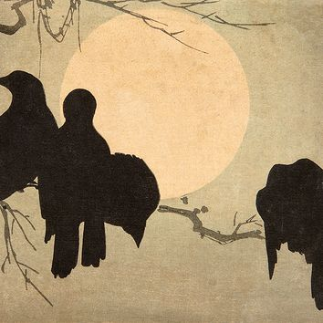 Crows in the Moonlight
