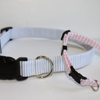 Preppy Pink or Blue Searsucker Dog Collar - Adjustable