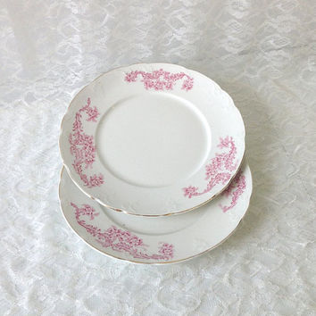 2 Antique French Ironstone Pink Floral Dinner Plates
