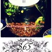 Vinny Blanco Vino Fish Tank by Graphic Nature™