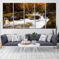 56627 - Forest Wall Art- Autumn Canvas Print- Forest Canvas- Forest Canvas Art- National Art Print- Canvas Print- Large Wall Art-